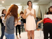 Model fitting for Morgane Le Fay