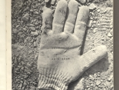 Stoned Gloves