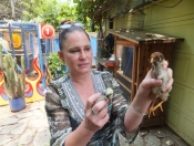 Cindy Kolodziejski With Chick; Photo by Sue Mitchell